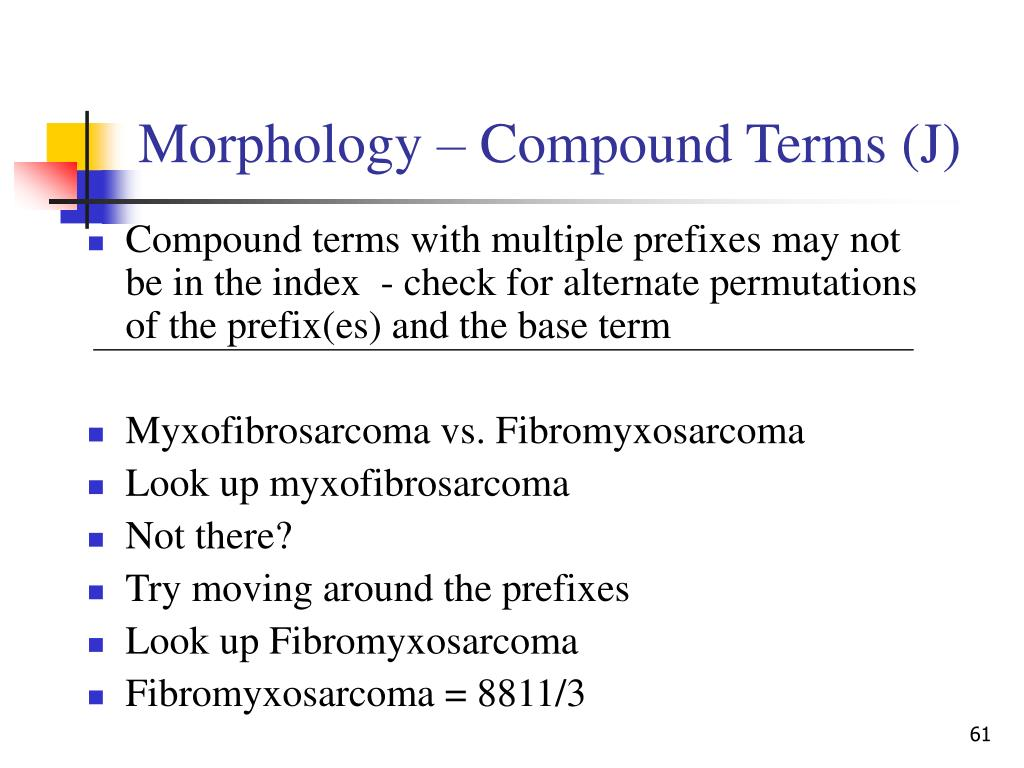 Morphology – Compound Terms (J)