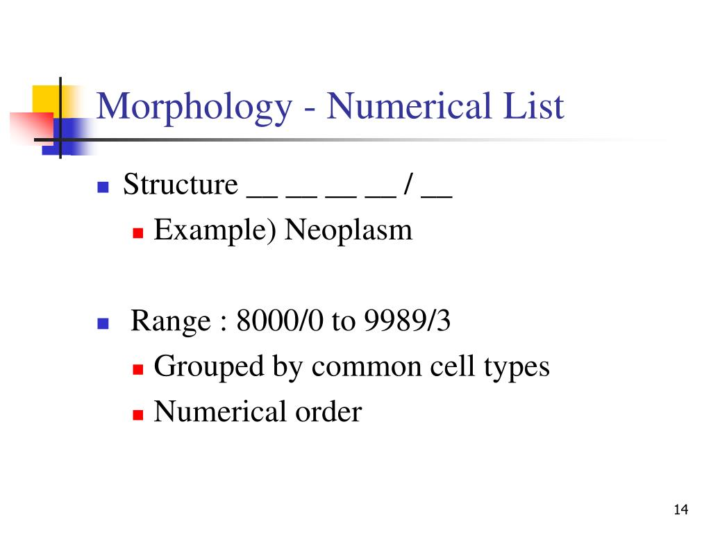 Morphology - Numerical List
