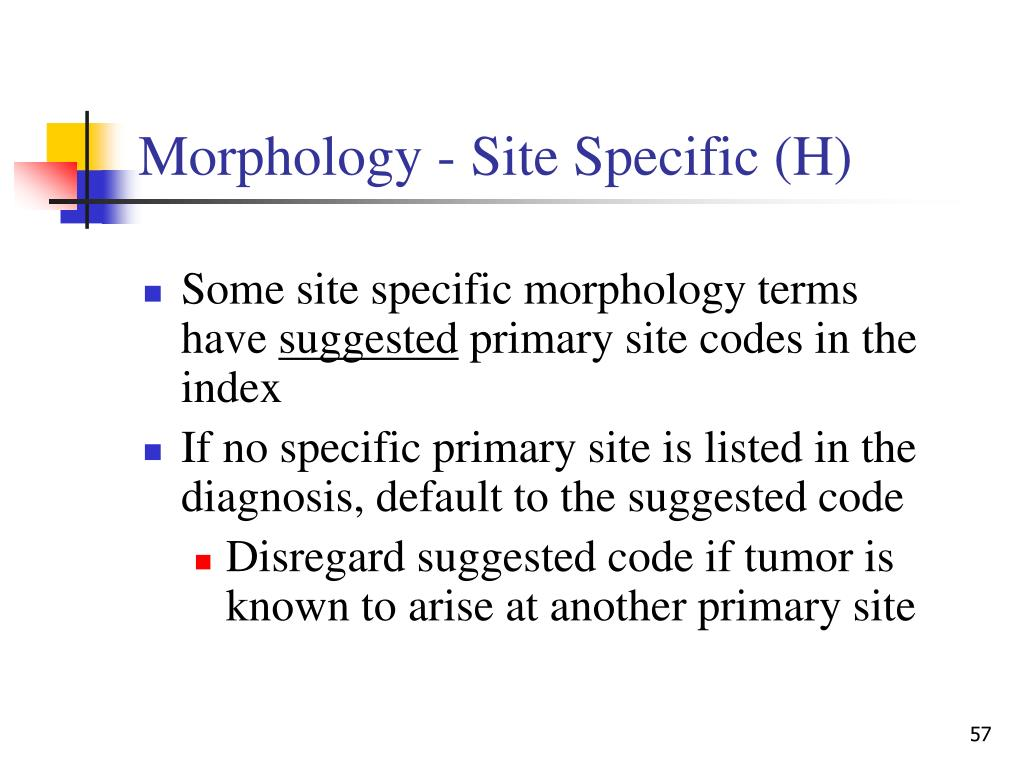 Morphology - Site Specific (H)