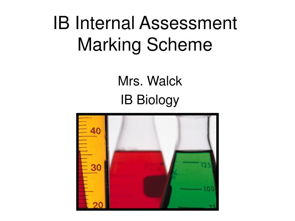 IB Internal Assessment Marking Scheme