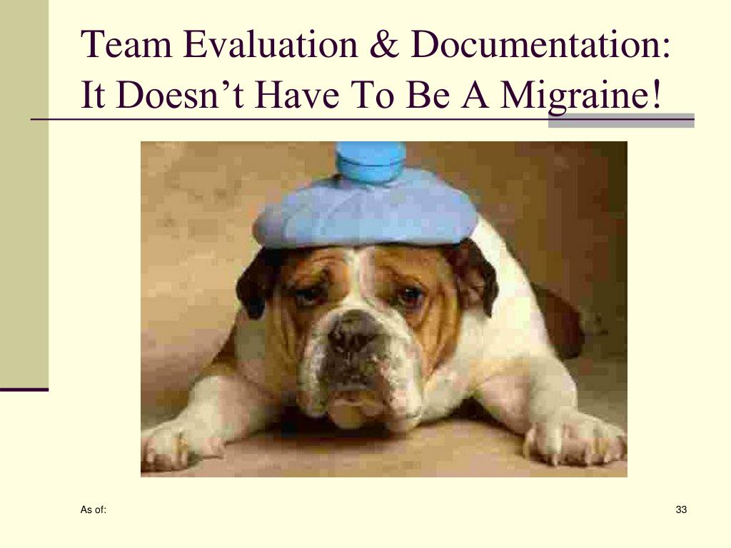 Team Evaluation & Documentation: