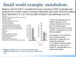 small world example metabolism
