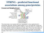 string predicted functional associations among genes proteins95
