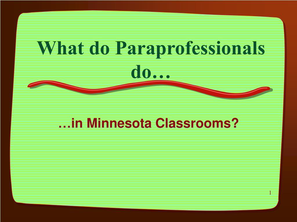 what do paraprofessionals do l.
