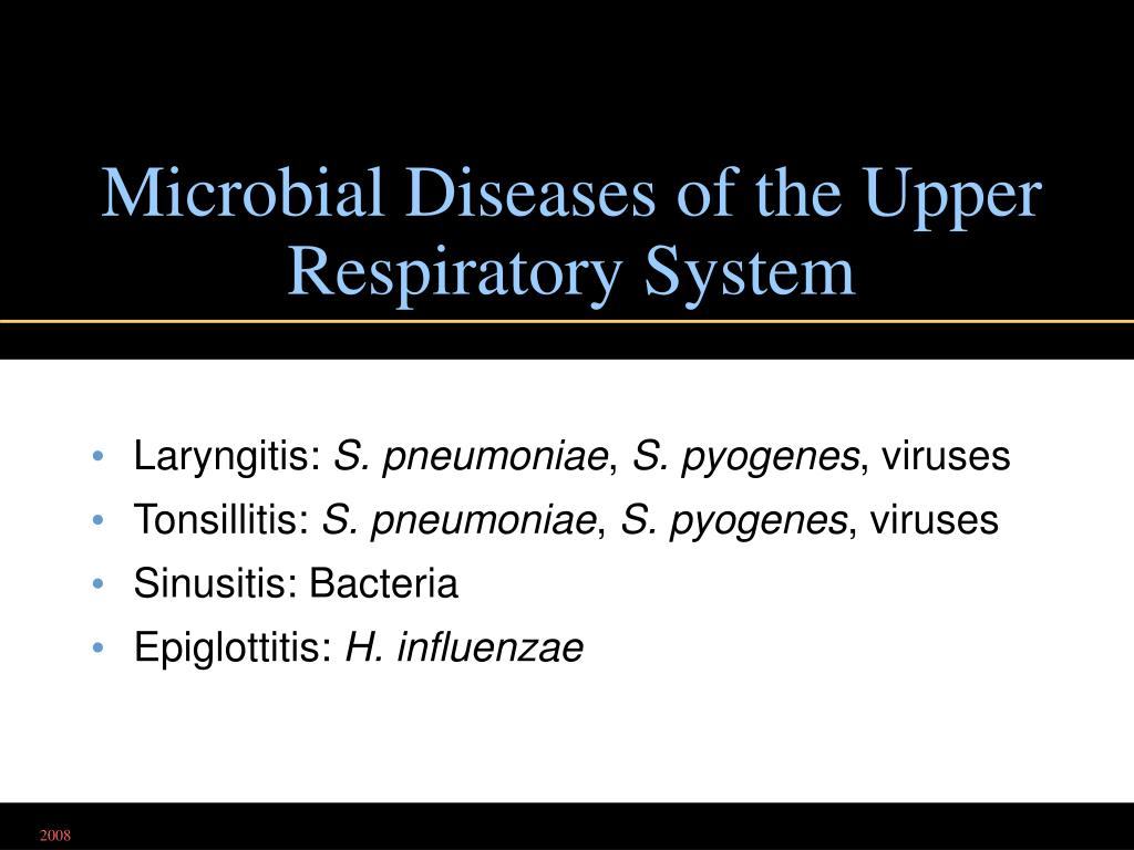 Microbial Diseases of the Upper Respiratory System
