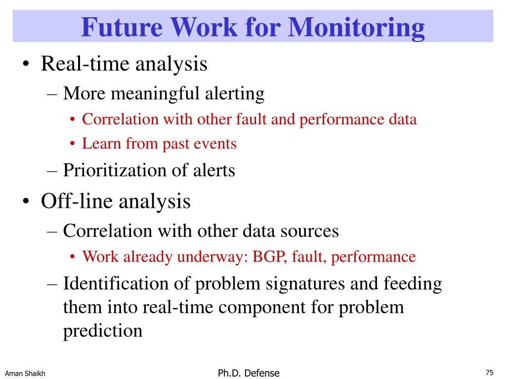 Future Work for Monitoring