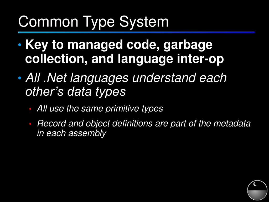 Common Type System