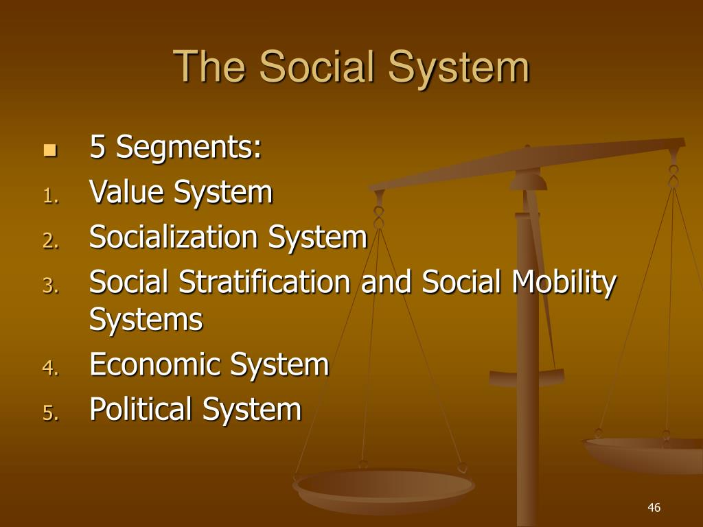 The Social System