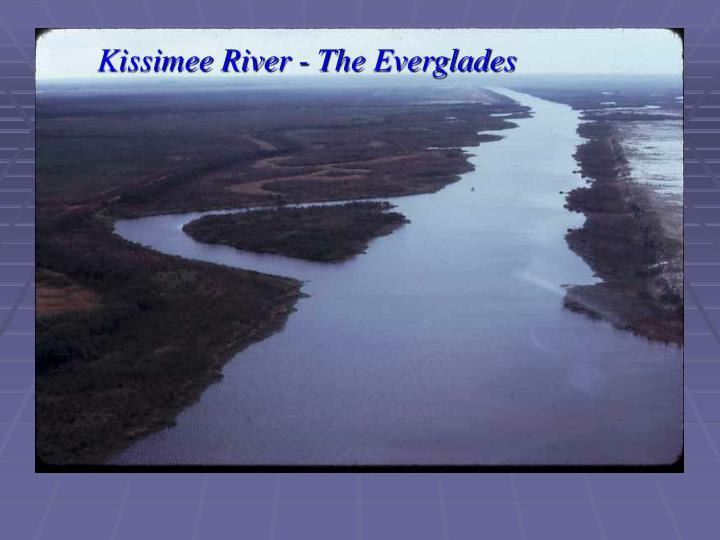 Kissimee River - The Everglades
