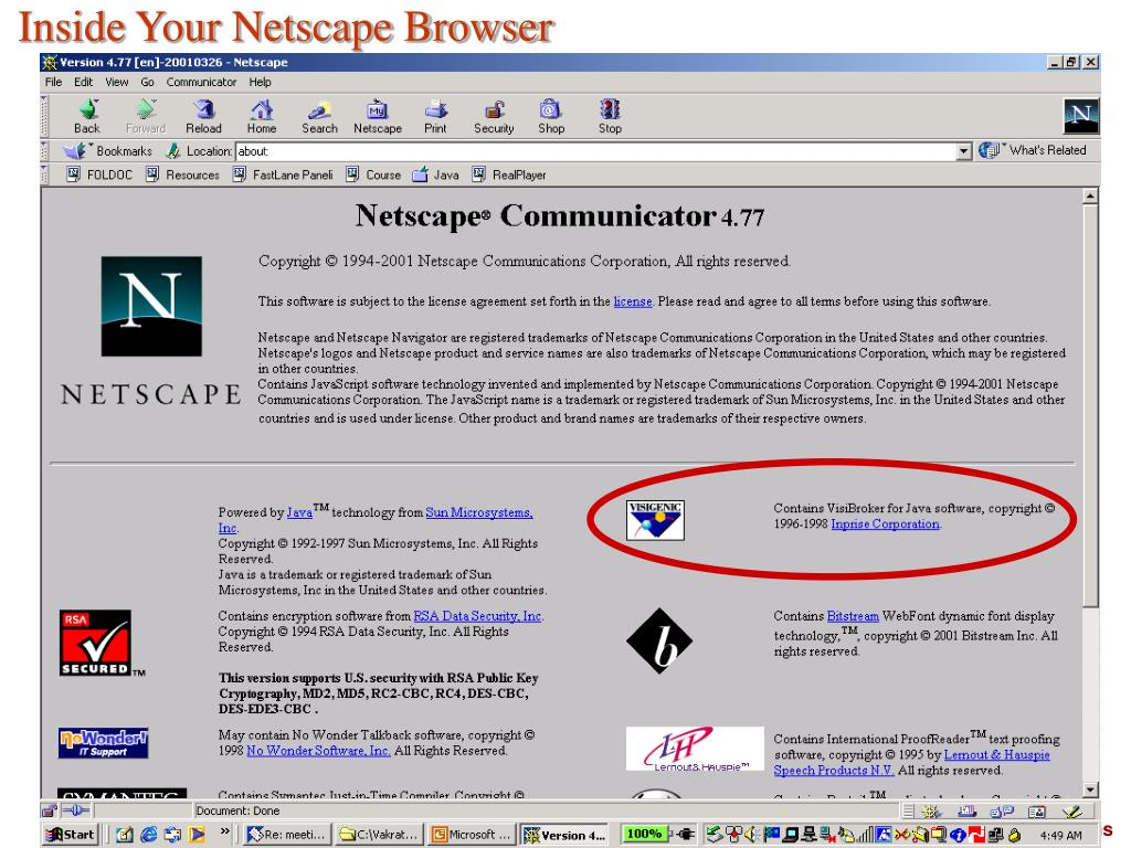 Inside Your Netscape Browser