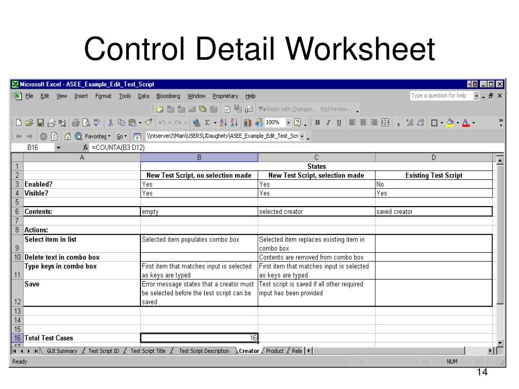 Control Detail Worksheet