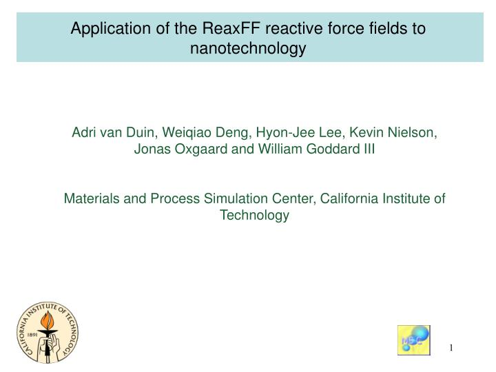 Application of the ReaxFF reactive force fields to nanotechnology
