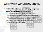 adoption at local level