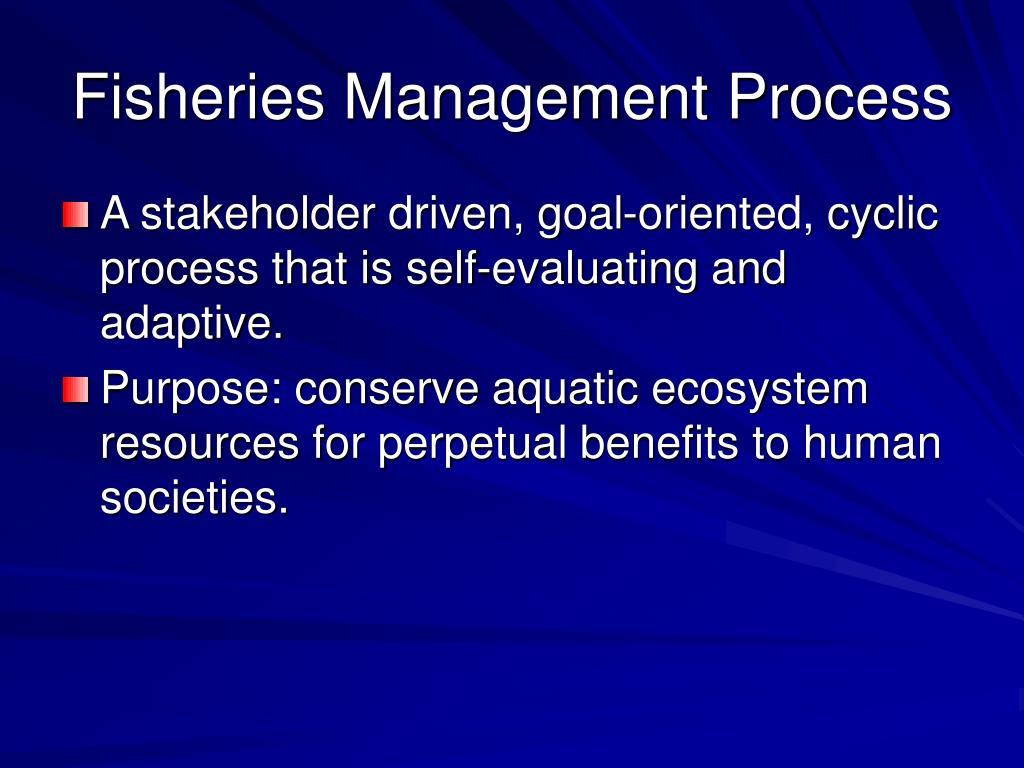 Fisheries Management Process