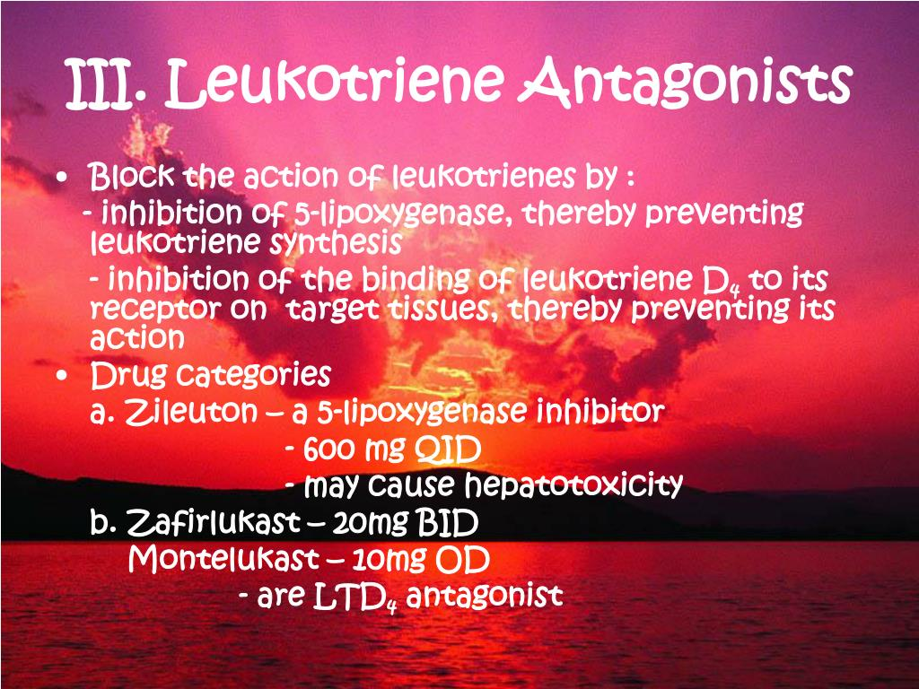 III. Leukotriene Antagonists