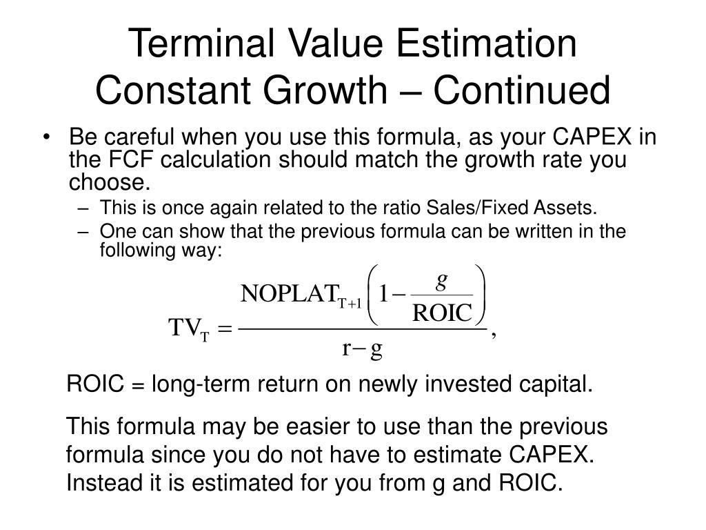 Terminal Value Estimation