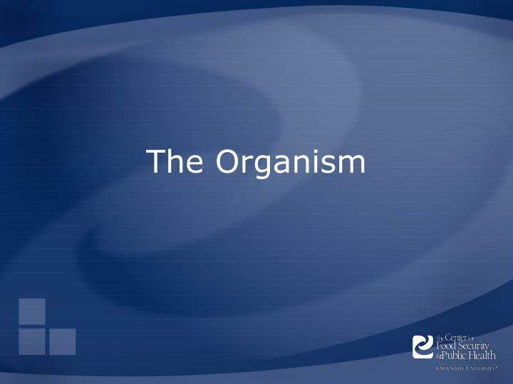 The organism