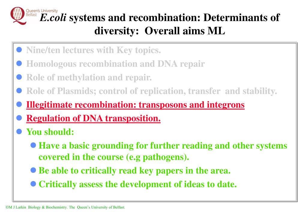e coli systems and recombination determinants of diversity overall aims ml
