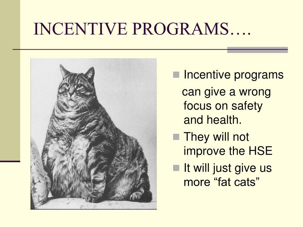 INCENTIVE PROGRAMS….