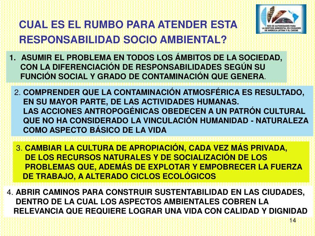 ASUMIR EL PROBLEMA EN TODOS LOS ÁMBITOS DE LA SOCIEDAD,