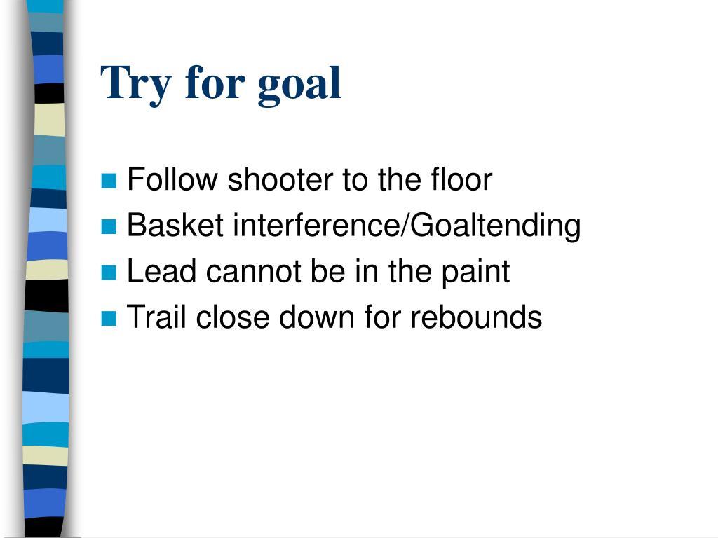 Try for goal