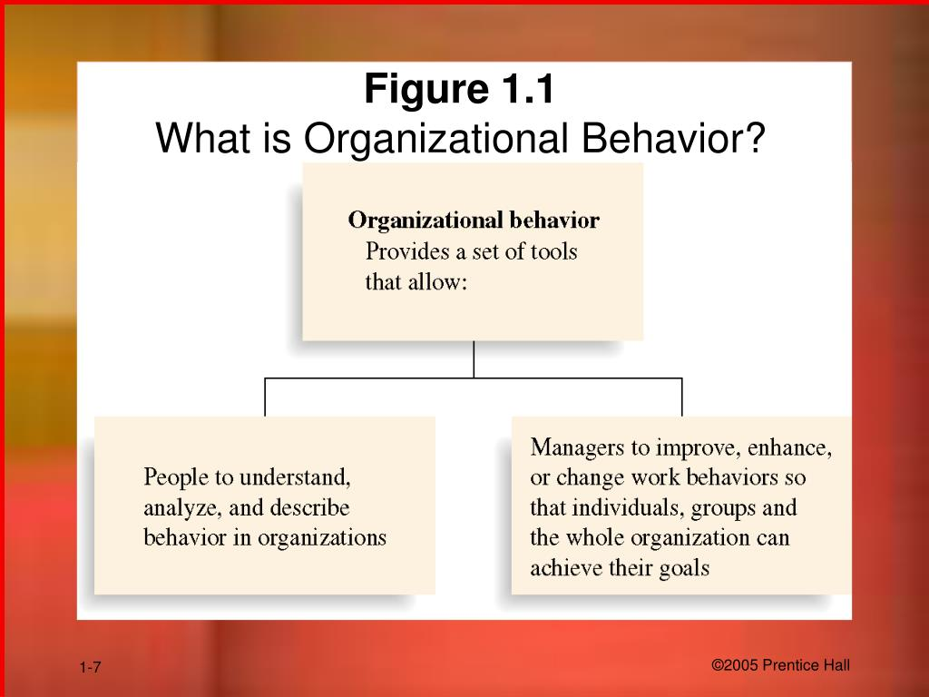 organizational behavior pp