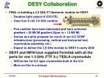 desy collaboration