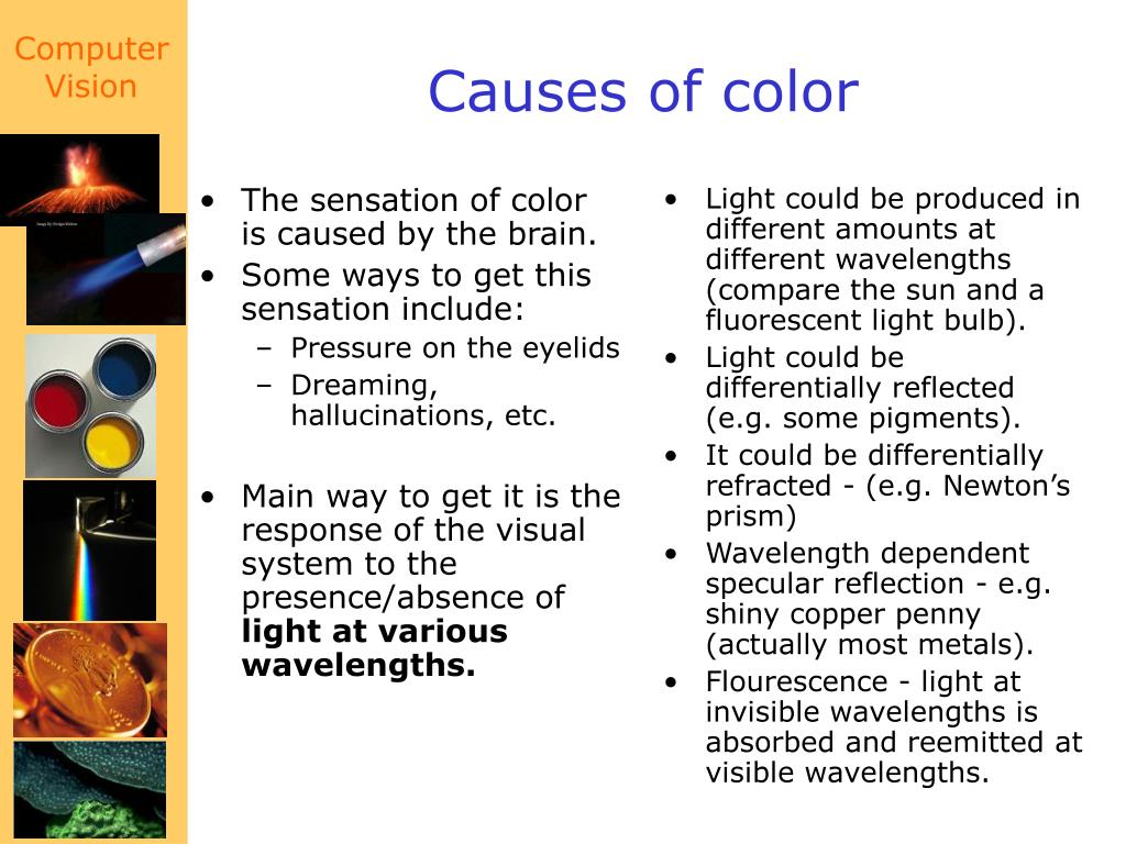 The sensation of color is caused by the brain.