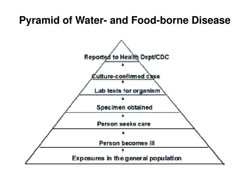 Pyramid of Water- and Food-borne Disease