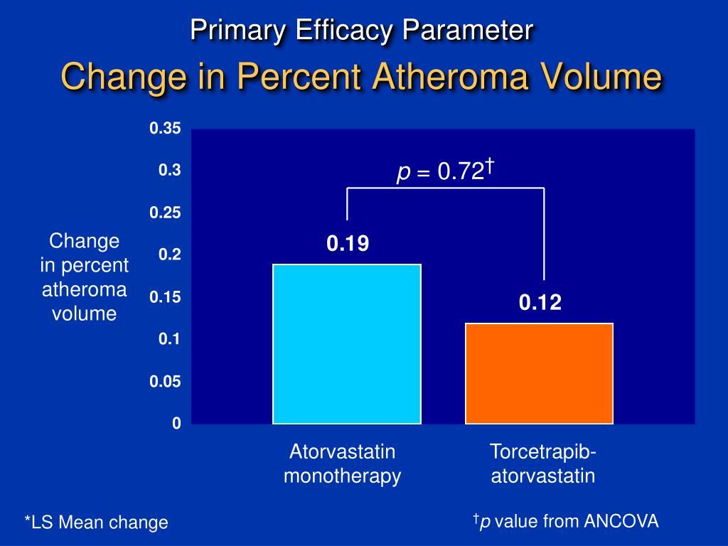 Primary Efficacy Parameter