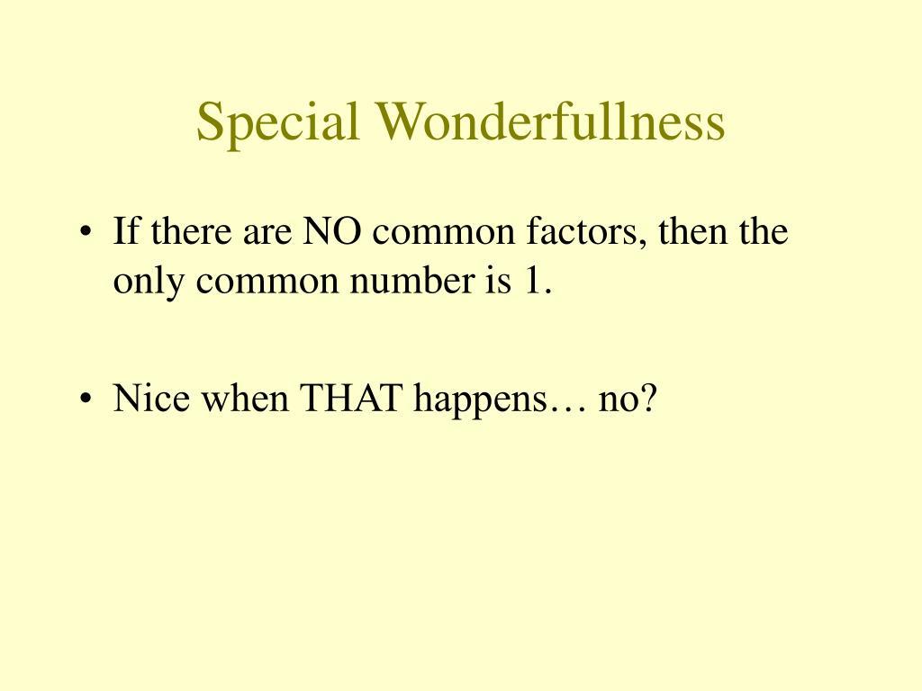 Special Wonderfullness