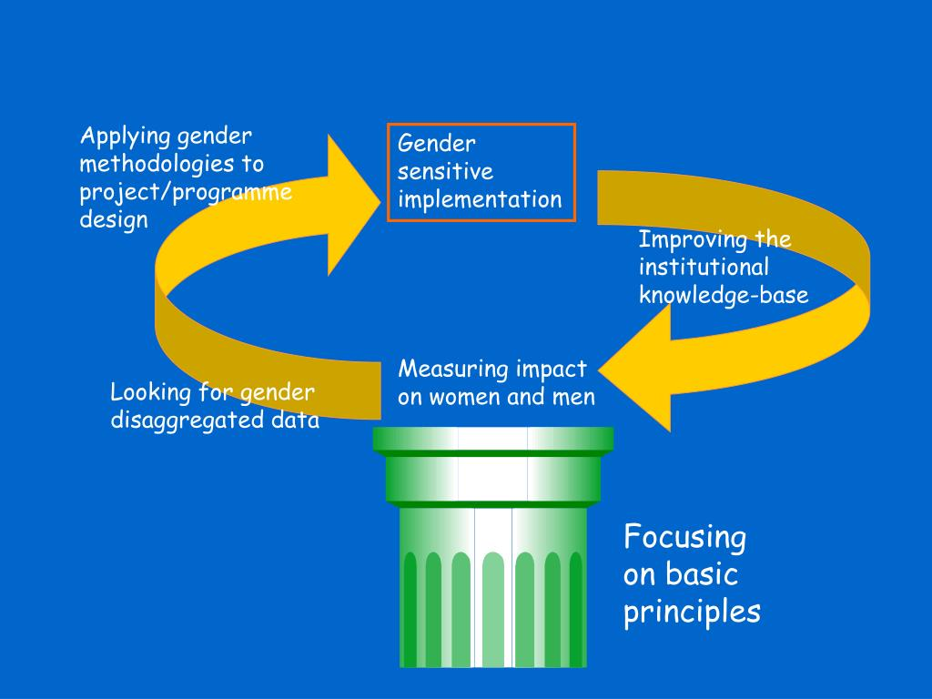 Applying gender methodologies to project/programme design