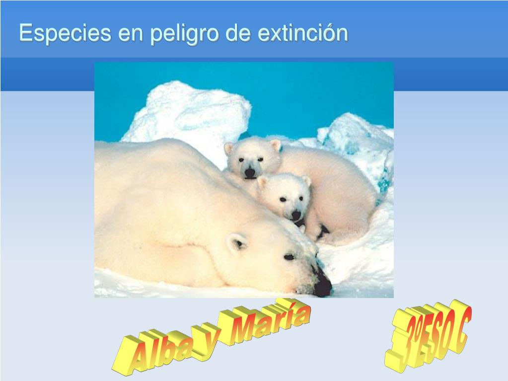 especies en peligro de extinci n l.