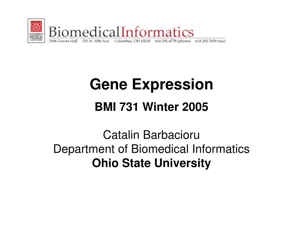 gene expression bmi 731 winter 2005 l.