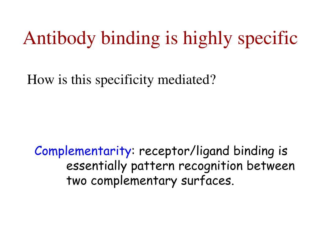 Antibody binding is highly specific