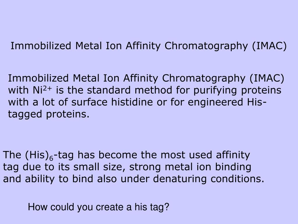 Immobilized Metal Ion Affinity Chromatography (IMAC)