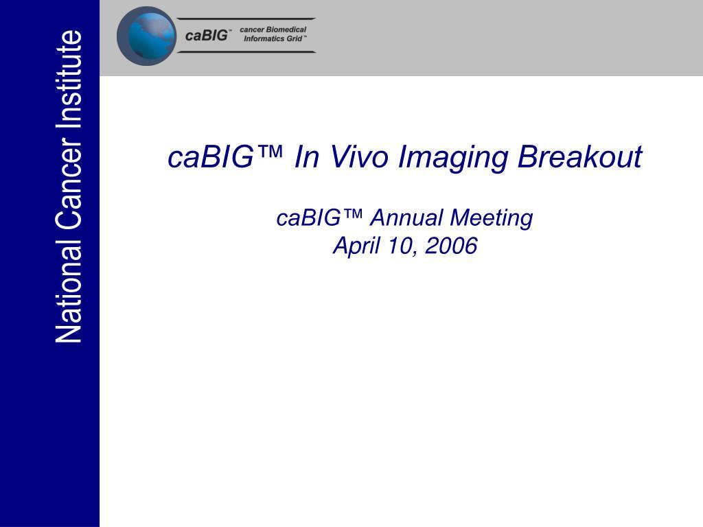 cabig in vivo imaging breakout cabig annual meeting april 10 2006 l.