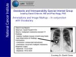 standards and interoperability special interest group lead by david channin md and paul nagy phd29