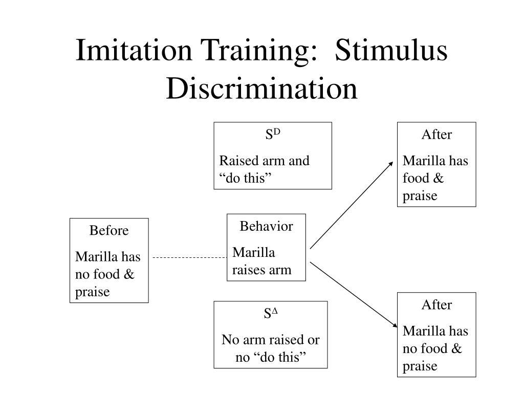 Imitation Training:  Stimulus Discrimination