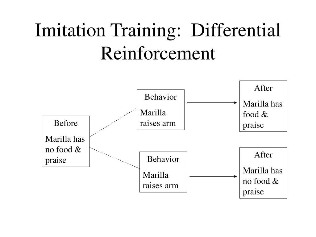 Imitation Training:  Differential Reinforcement