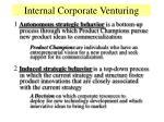 internal corporate venturing