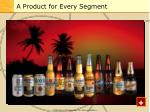 a product for every segment