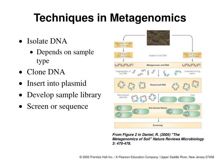Techniques in metagenomics