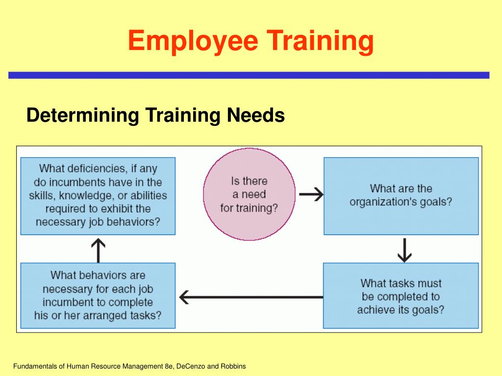 orientation and employee training
