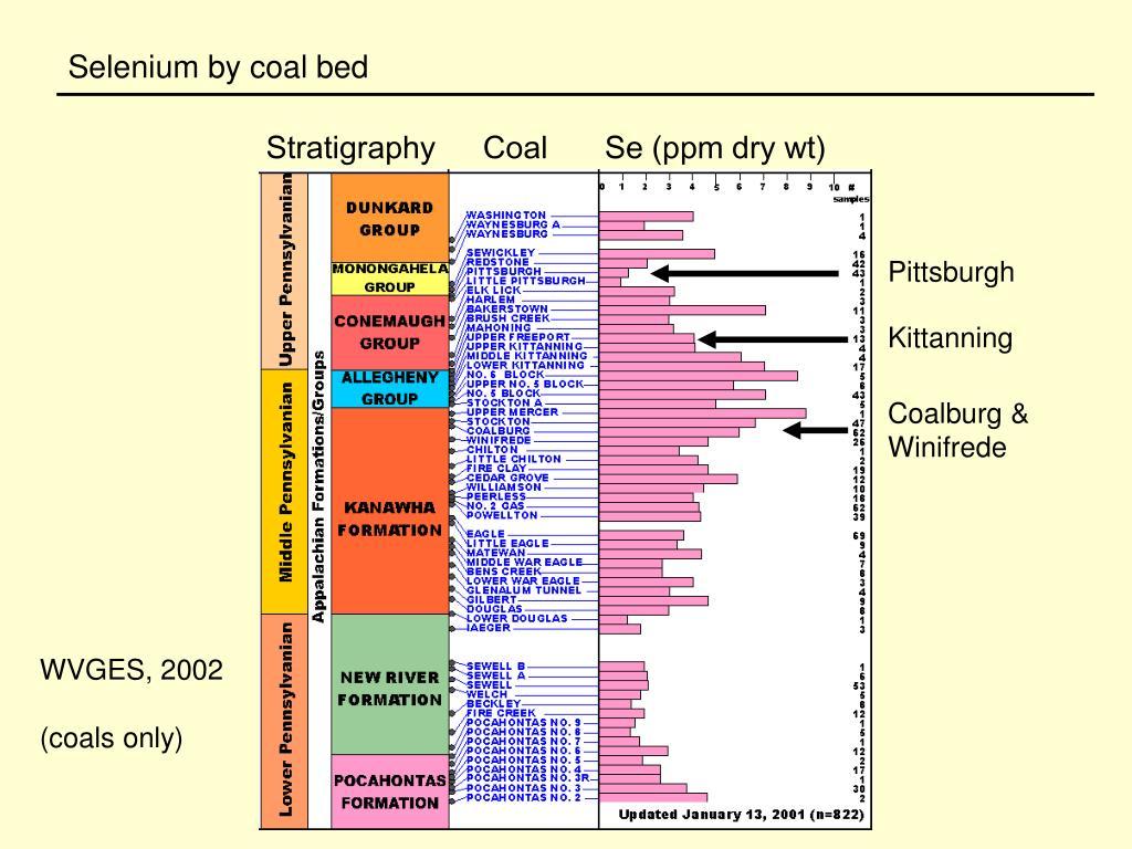 Selenium by coal bed