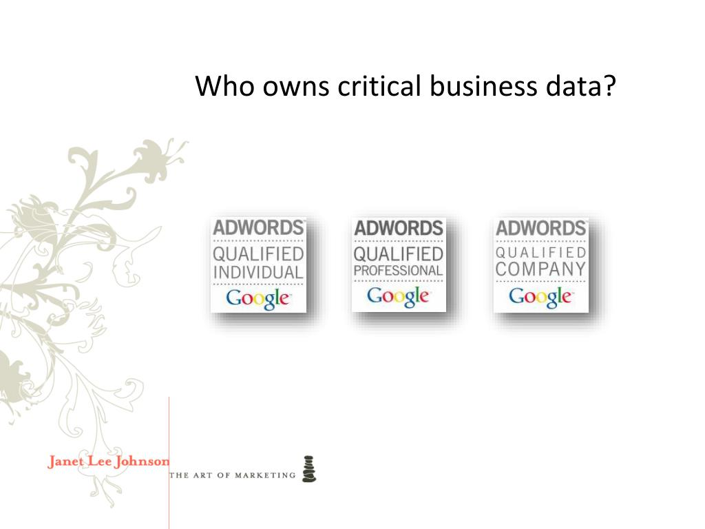 Who owns critical business data?