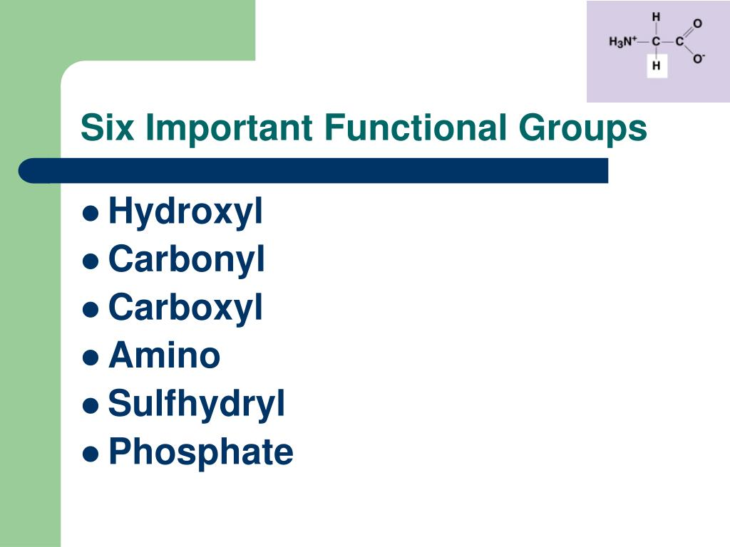 Six Important Functional Groups