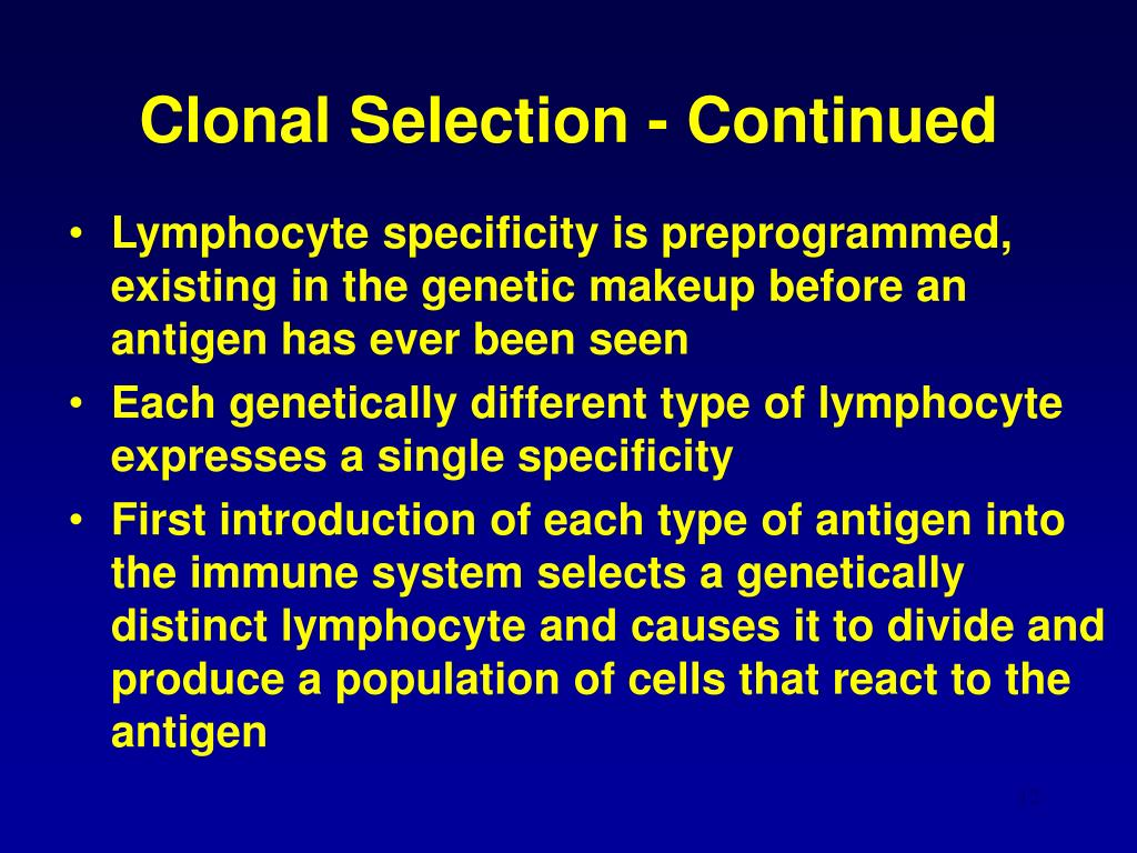 Clonal Selection - Continued