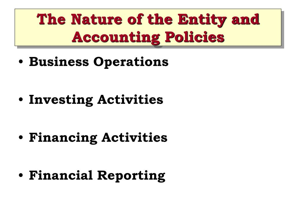 The Nature of the Entity and Accounting Policies