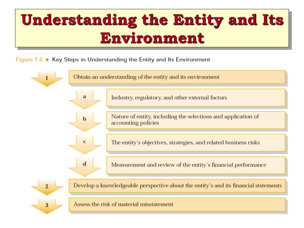 Understanding the Entity and Its Environment